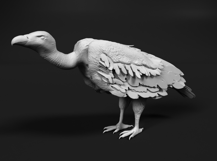 White-Backed Vulture 1:87 Standing 1 3d printed