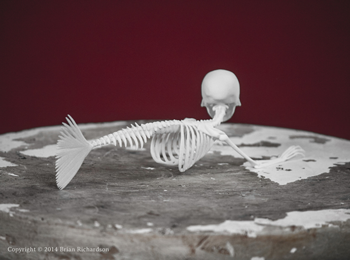Feejee Mermaid Skeleton 3d printed