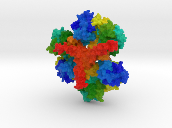 Huntingtin Protein 3d printed