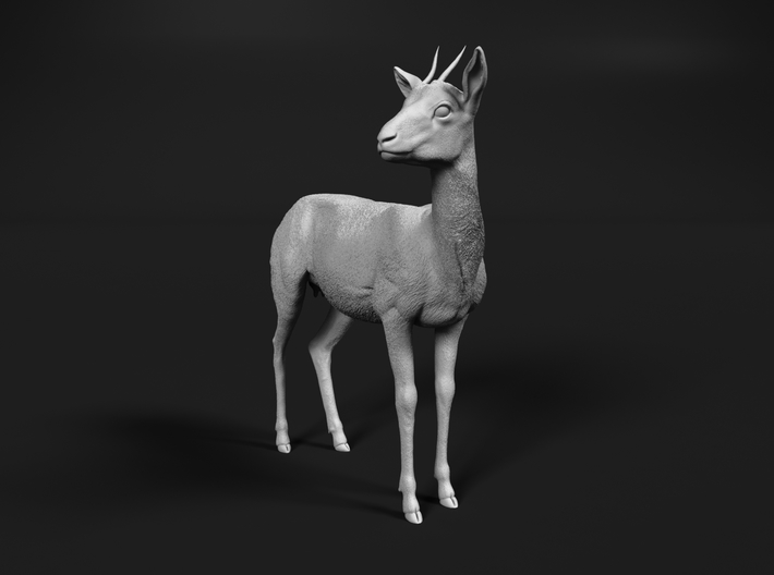Thomson's Gazelle 1:12 Standing Female 3d printed