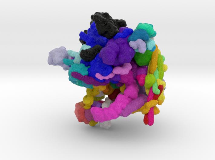 Spliceosome 3d printed