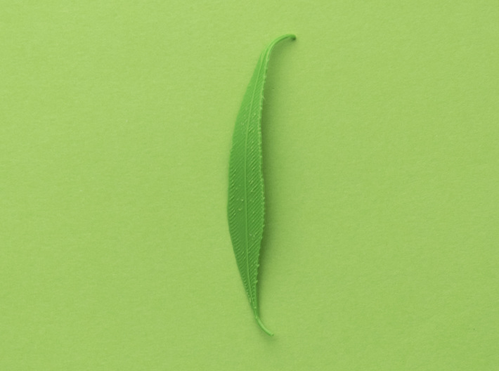 Willow tree leaf 3d printed Printed with PLA and bent