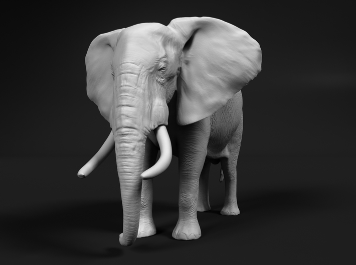 African Bush Elephant 1:12 Standing Male 3d printed