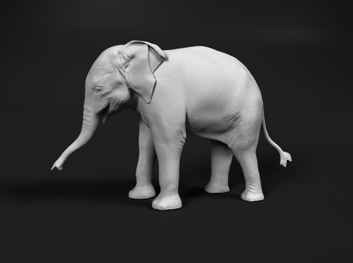 Indian Elephant 1:32 Standing Female Calf 3d printed
