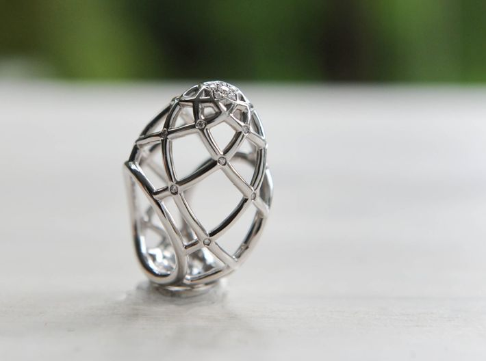 Ovo Ring 53-61 3d printed Diamonds and White Gold...
