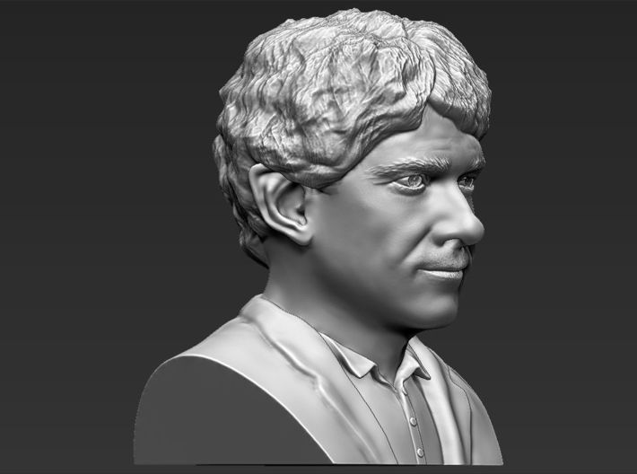 Bilbo Baggins from the Hobbit bust 3d printed