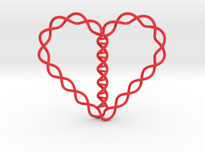 Helix Heart 3d printed