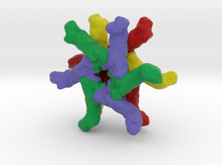 Vacuolating Cytotoxin Autotransporter 3d printed