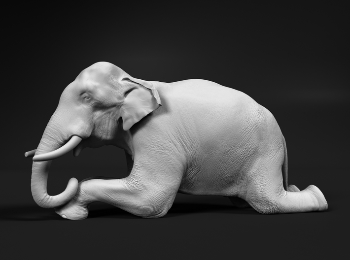 Indian Elephant 1:87 Kneeling Male 3d printed