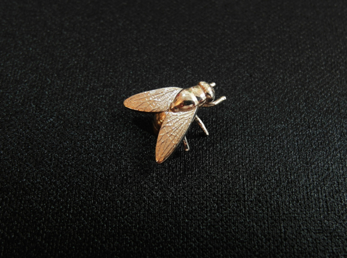 Fly Necklace 3d printed Polished Silver