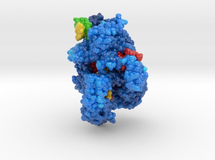 CRISPR-Cpf1 5B43 3d printed