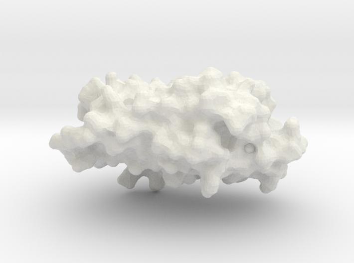 Rhodopsin Photocenter Monomer - Surface Render 3d printed