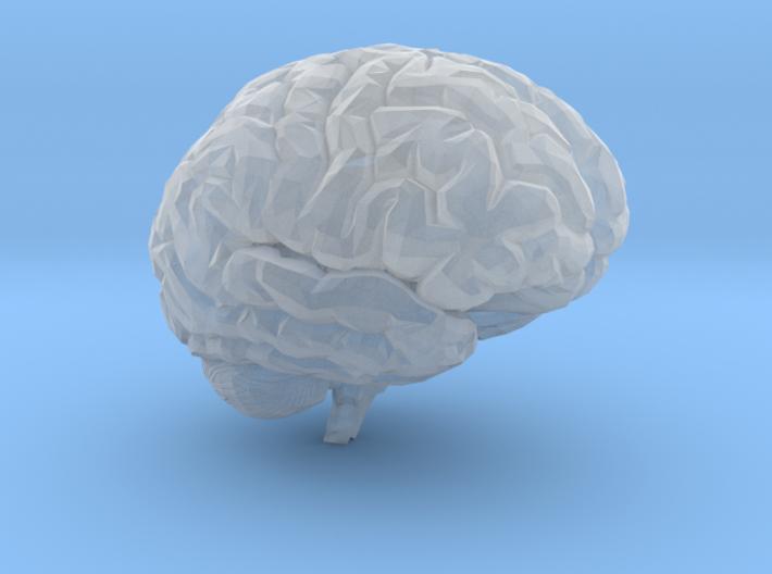Brain 3D 3d printed
