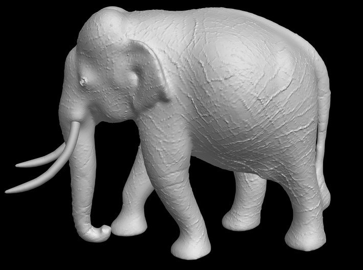 Indian Elephant 3d printed Indian Elephant (side view)
