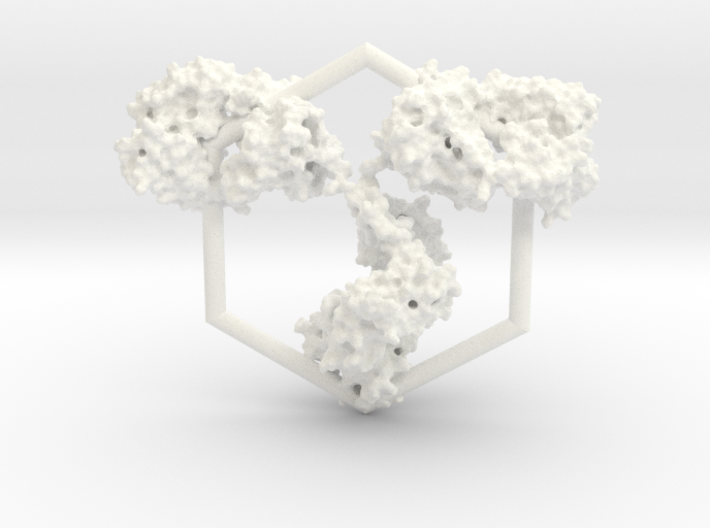 Antibody Ornament 3d printed