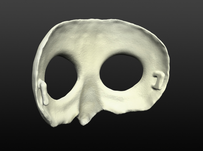 Owl Mask 3d printed rear view