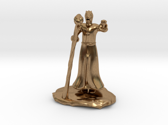 Dragonborn Wizard in Robes with Staff 3d printed