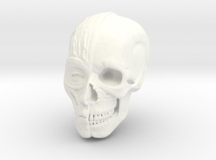 Anatomy Head 3d printed