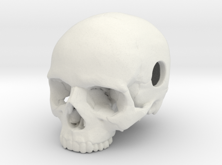 20mm .8in Keychain Bead Human Skull 3d printed