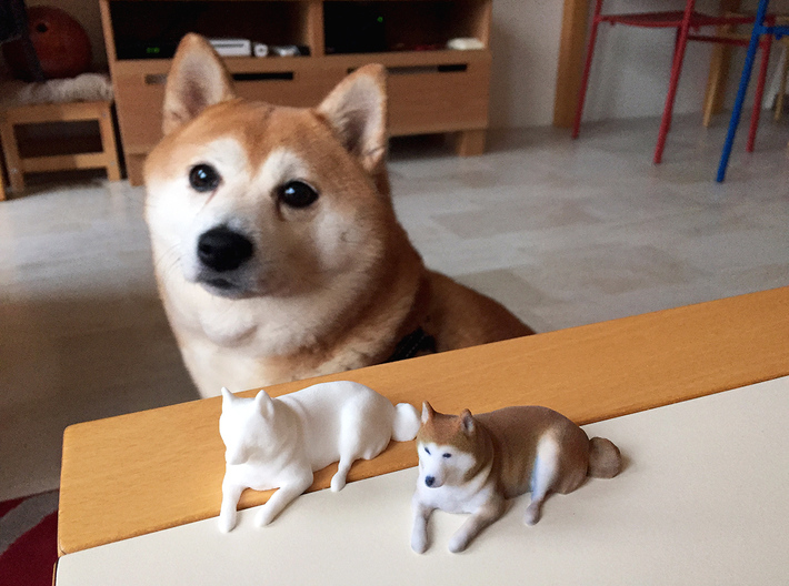 Daisy the Shiba Inu 3d printed Daisy and her minions