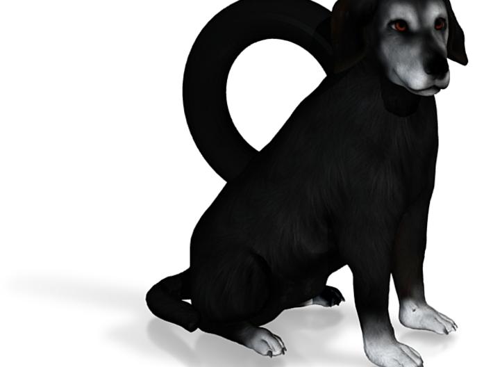 Custom Dog Earrings - Sunni 3d printed