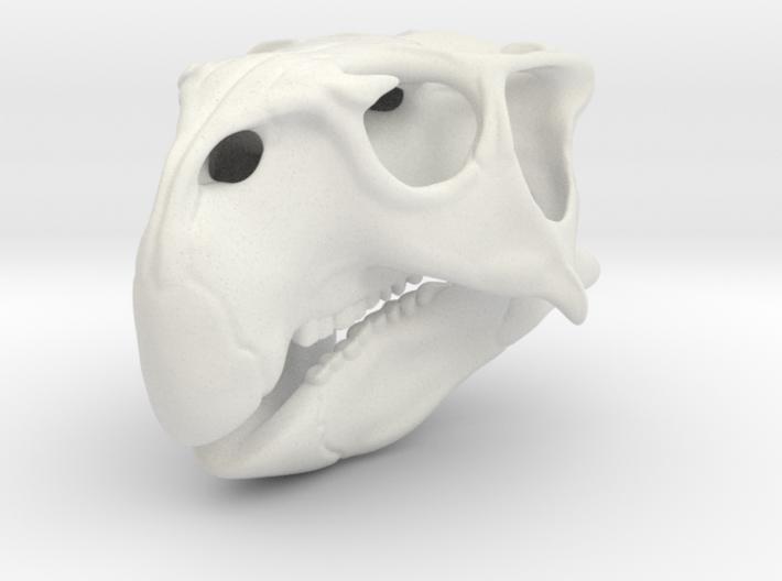 Skull Psittacosaurus 3d printed