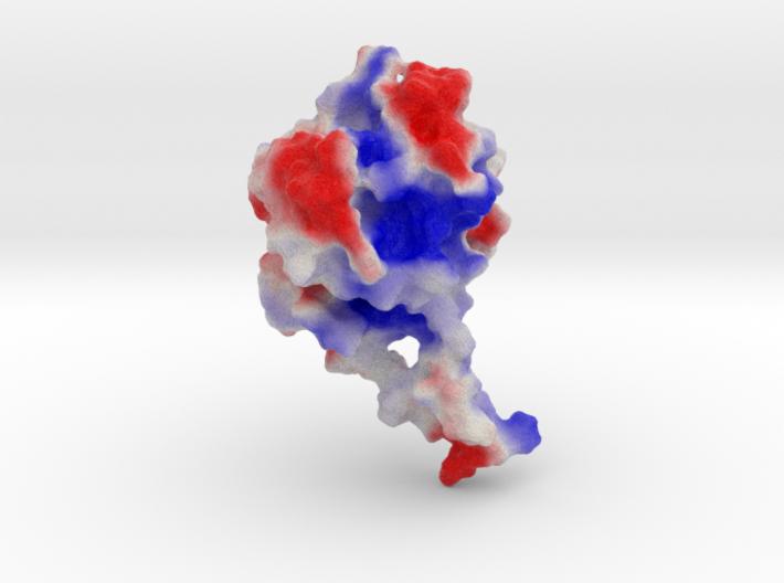 Phytochrome B 3d printed