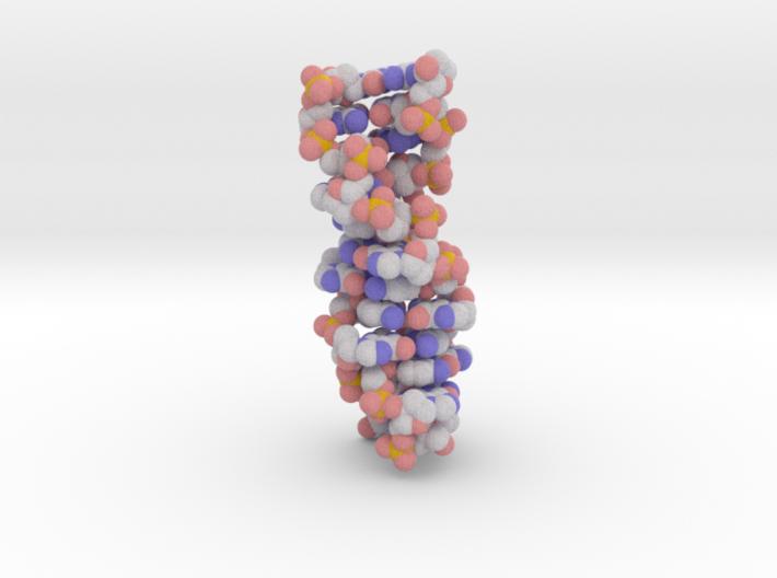 Z-DNA 3d printed