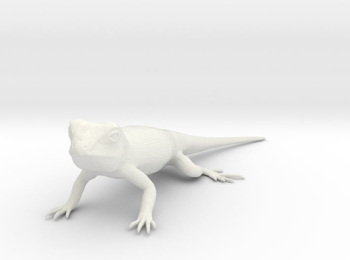 Blue Belly Lizard 3d printed