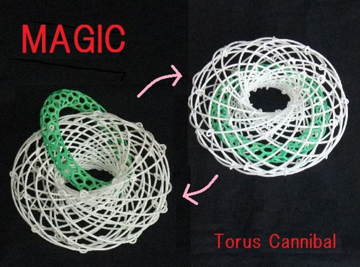 Torus Magic with Ring 2 3d printed