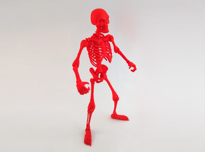 Articulated Skeleton Large 3d printed Fully assembled skeleton.
