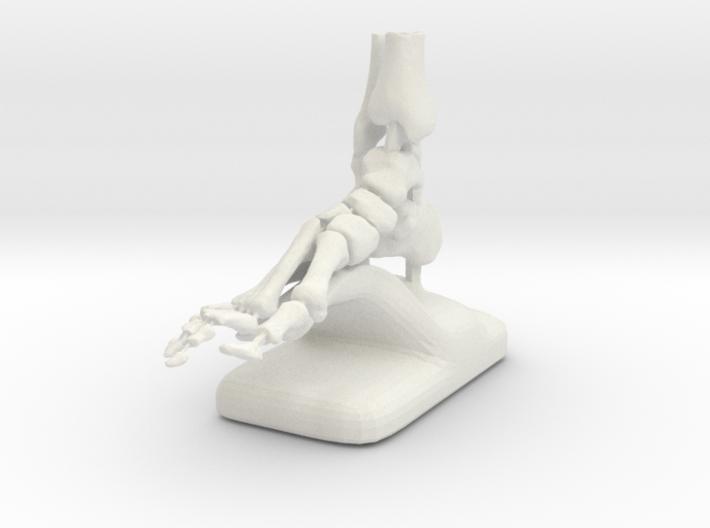 Large Scale Podiatry/Orthopedic Bones of Foot Mode 3d printed