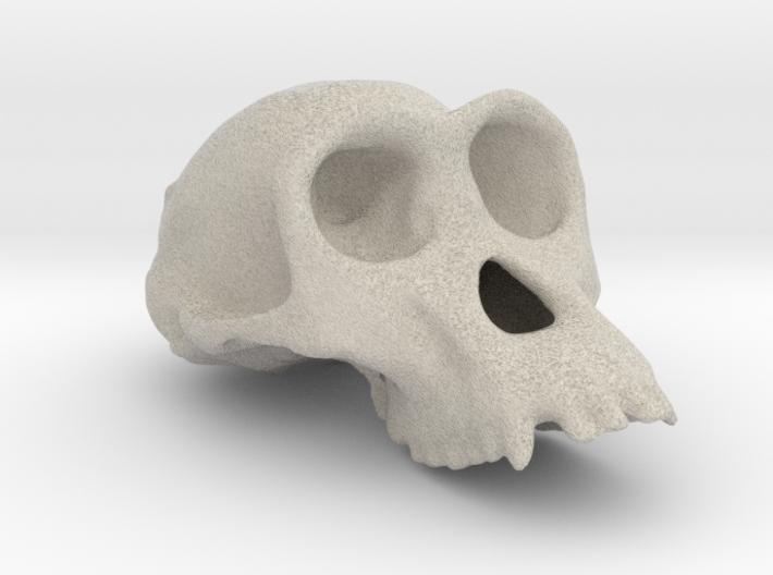 Chimpanzee ♀ cranium 3d printed