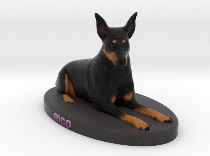 Custom Dog Figurine - Rico 3d printed