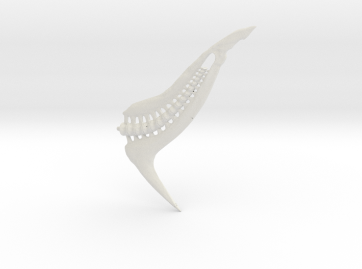 Tail From Shapeways2 Blend1 3d printed