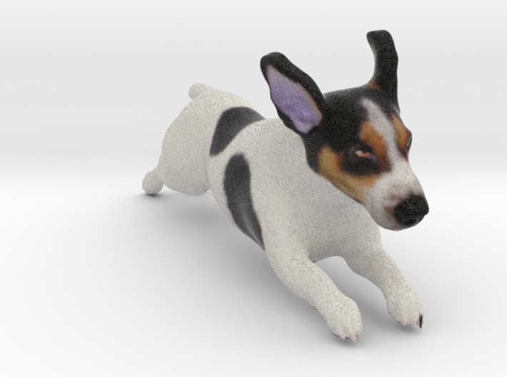 Running Jack Russell Terrier 3d printed