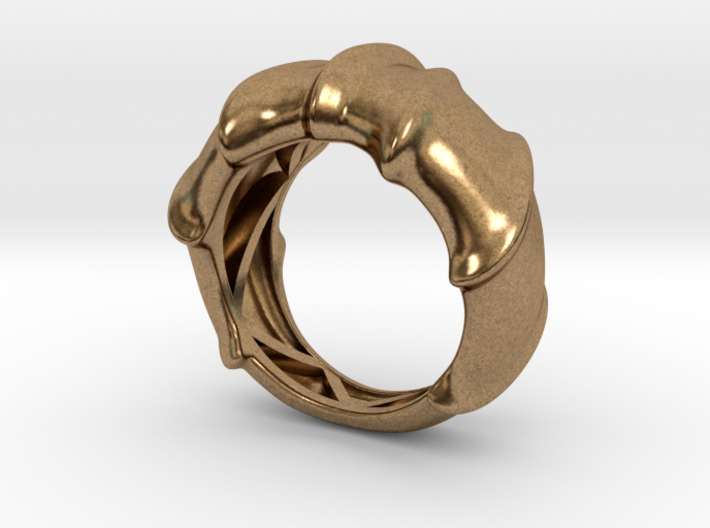 Leatherback Turtle Shell Ring 3d printed