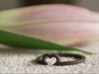 Heart Ring - Size Small  3d printed