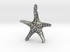 Starfish Pendant 1 - small 3d printed