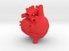 Anatomical Sacred Heart 3d printed