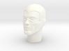 1:6 Scale The Phantom Head 3d printed