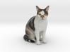 Custom Cat Figurine - Simba 3d printed
