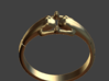 Frogs Ring Size12 3d printed