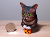 Lil Bub look-a-like 3d printed