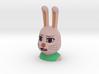 Usami-chan - Sharp-eyes Half 3d printed