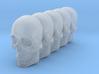 Bsi-skull-human-08mm-jaw 023 3d printed