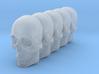 Bsi-skull-human-10mm-jaw 023 3d printed