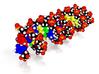 JOHNLGAL DNA Molecule Model 3d printed