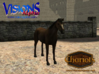 Horse Arabian 3d printed Dark Bay Arabian horse