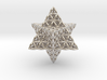 Flower Of Life Star Tetrahedron 3d printed